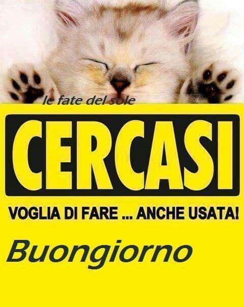 Immagini buongiorno belle per whatsapp for Immagini divertenti di buongiorno per whatsapp