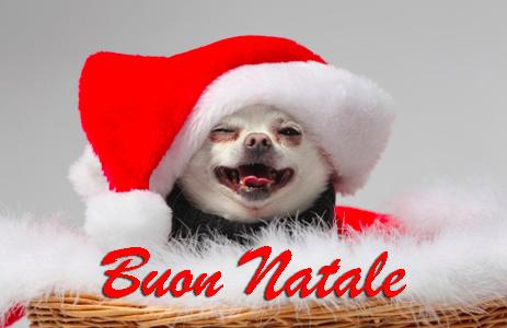 Frasi Auguri Natale Zii.80 Stati Di Buon Natale 80 Immagini Natalizie Per Bambini