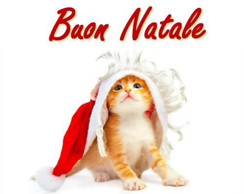 Immagini Carine Di Natale.Immagini Di Natale Per Whatsapp