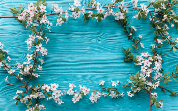 Sfondi di primavera animati