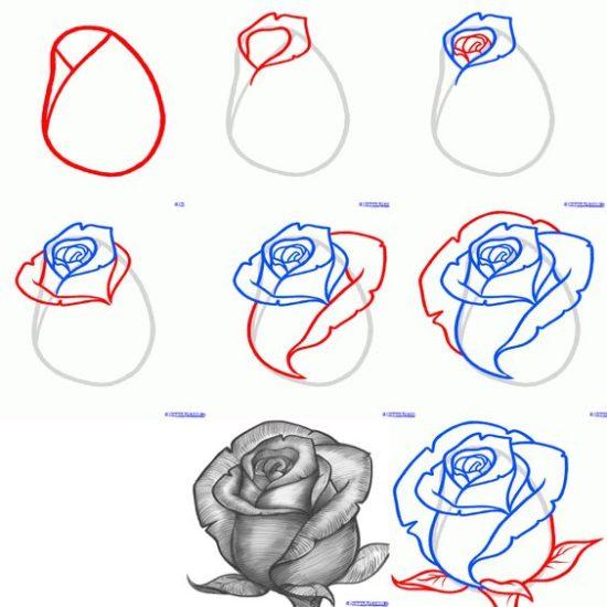 Disegni Da Copiare Esempi Di Disegni Da Studiare E Copiare