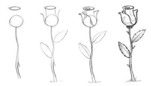 Come Disegnare Una Rosa Tumblr Ardusat Org