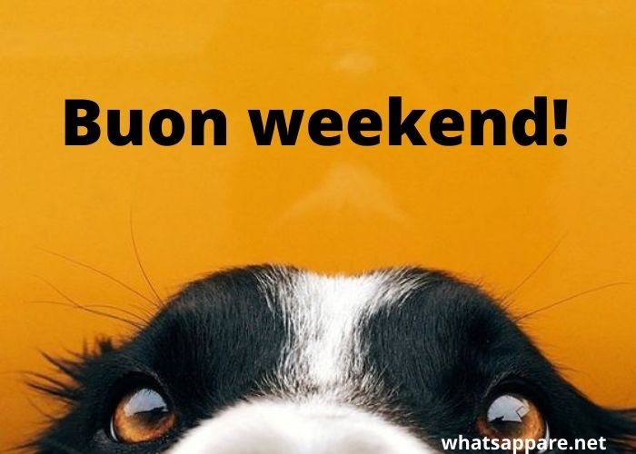 Buongiorno Buon Weekend Immagini Nuove da Condividere su Whatsapp